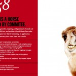 Camel: Horse designed by commitee